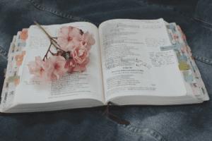 best bible tabs