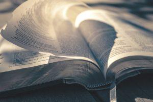 best fire bibles
